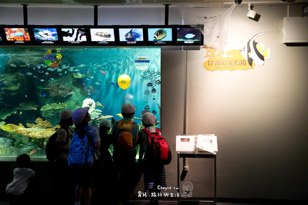 東京都心內最佳生命教育 品川水族館 親子遊東京