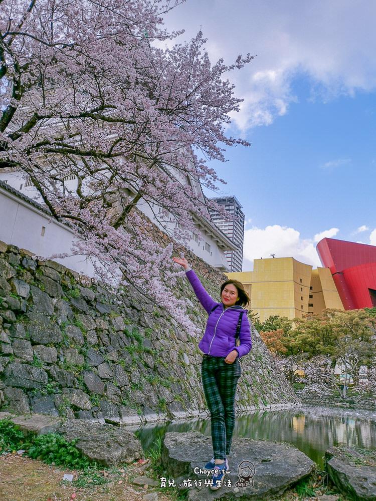日本空之子航空熊本包機 ~9/20-9/23大分、福岡四日輕旅行(跟團含稅含小費與專人導覽