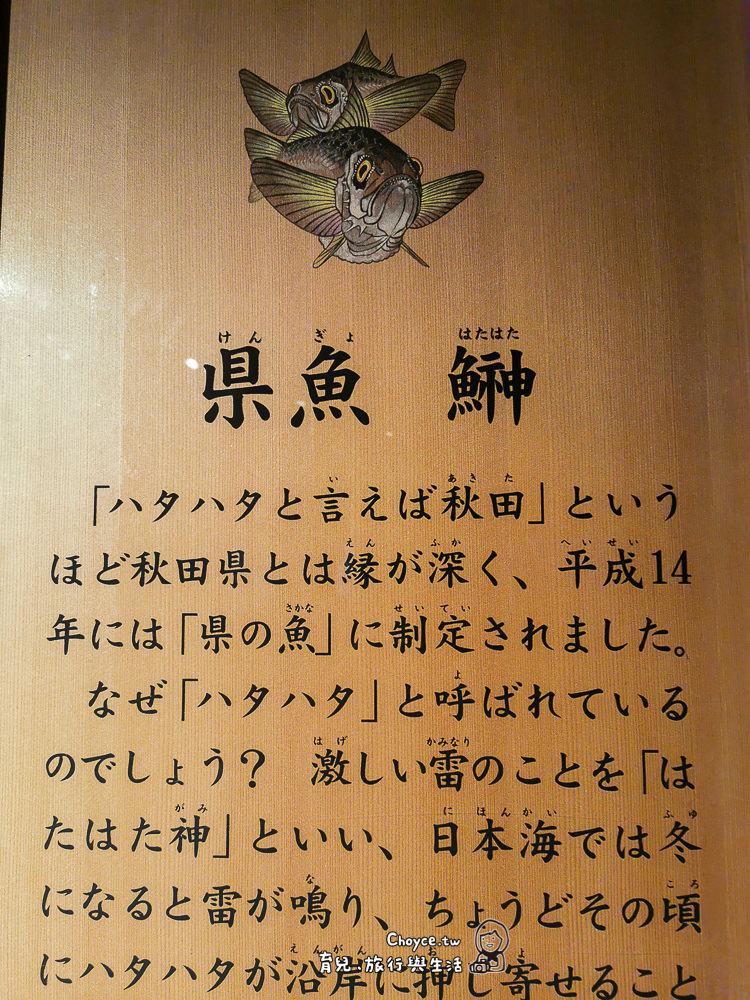 akita-226
