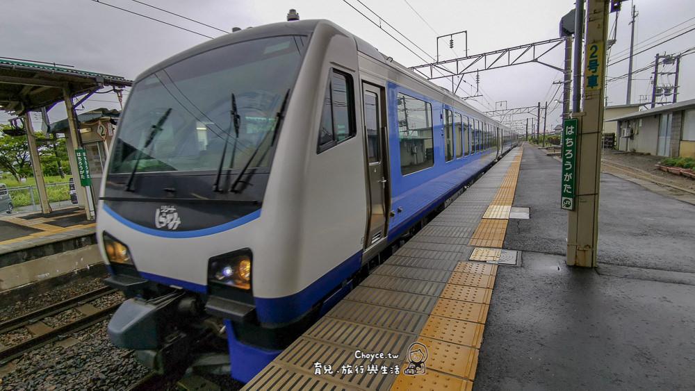 akita-235