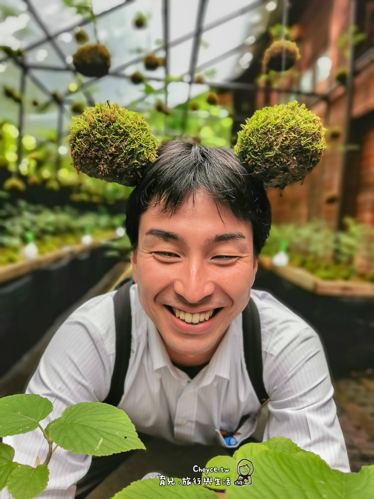 療癒系必備moss ball 苔玉 奧入瀨溪流美術創作 療癒手作苔玉體驗