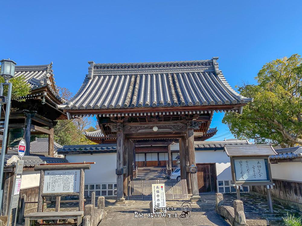 kyosyu-syochu-566
