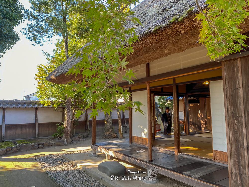 kyosyu-syochu-633