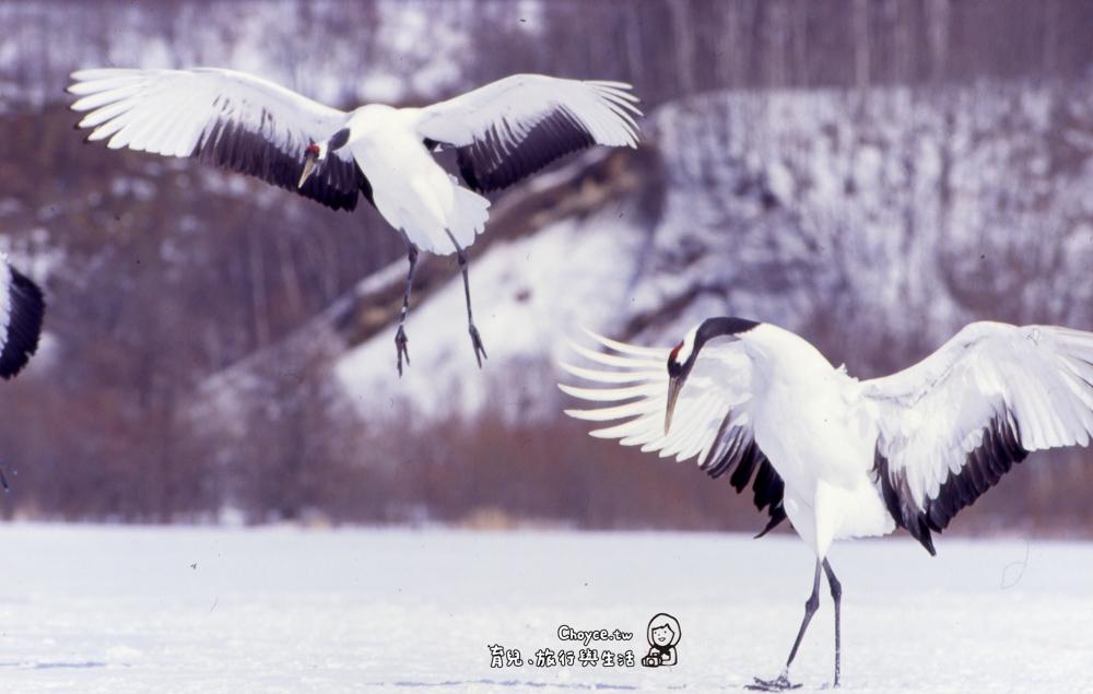 Tnacho Dance in Winter
