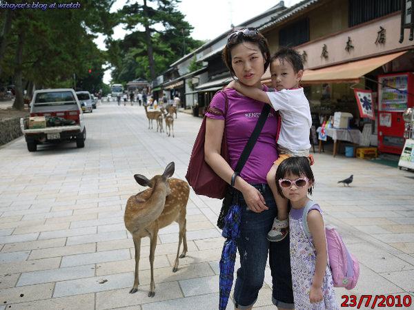 (日本)20100723 奈良 東大寺與春日大社