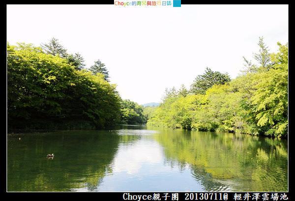 DSC_8733.jpg