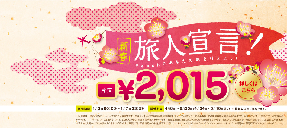 tbn_newyear_sale_20150103_jp