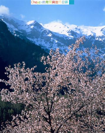 Mt.Kasagatake-Spring