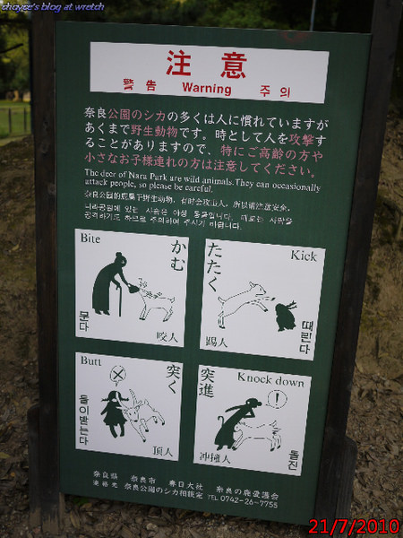 (日本)20100721 奈良梅花鹿特輯