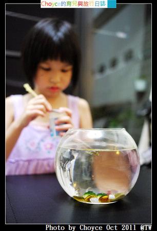 (生活記錄) 家裡新成員-蝦兵魚將來報到