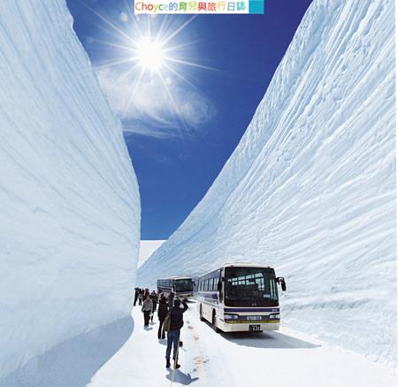 雪之大谷第1順位
