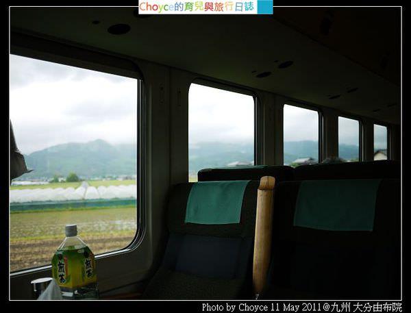 P1370041.jpg