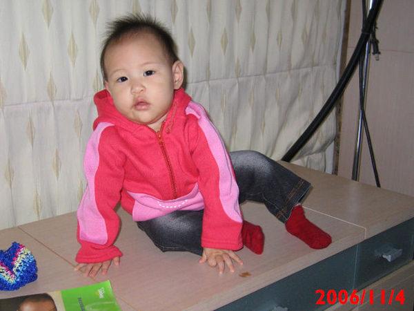九個月的孩子~~似懂非懂的年紀