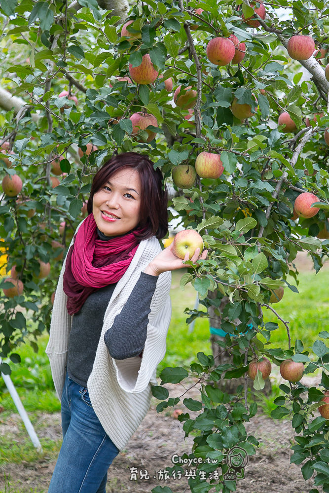 (日本親子旅遊行程規劃) Choyce群馬長野輕井澤親子賞楓團行程公開