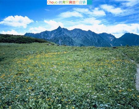 Mt.Nishihodaka-Summer